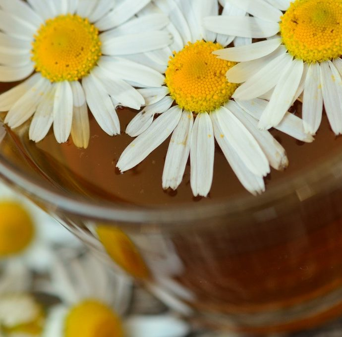 Quick Steps for Brewing Blooming Tea